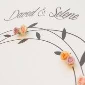 DAVED+SELENE